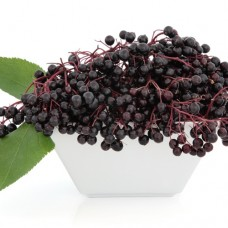 TPA | Elderberry