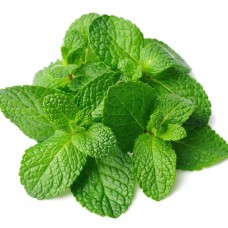 TPA | Spearmint